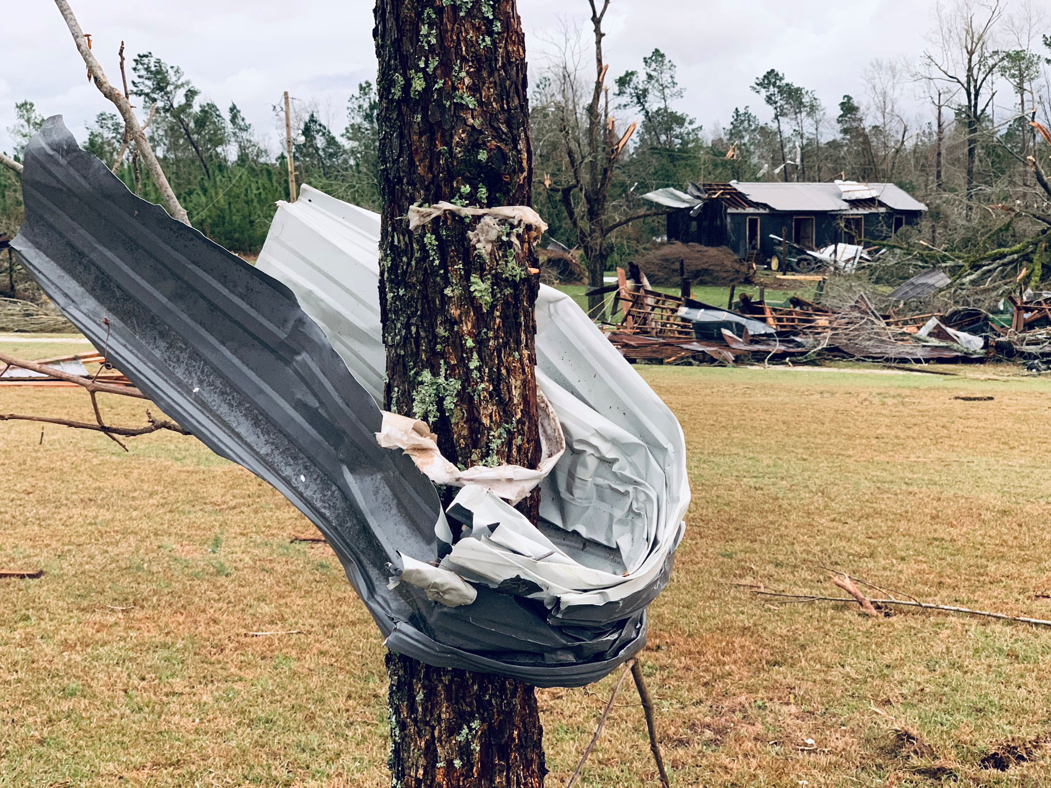 A piece of metal is seen wrapped around a tree following tornadoes in Beauregard, Alabama, in this March 3 still image obtain