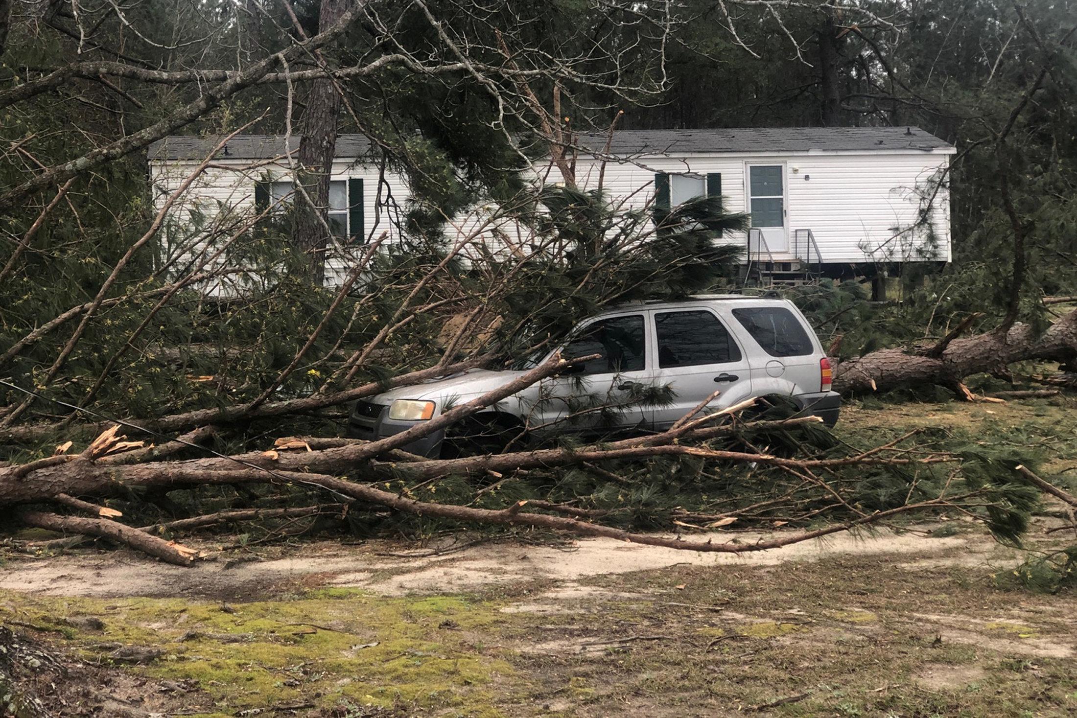 A tree fell on a car in Lee County near Beauregard, Alabama.