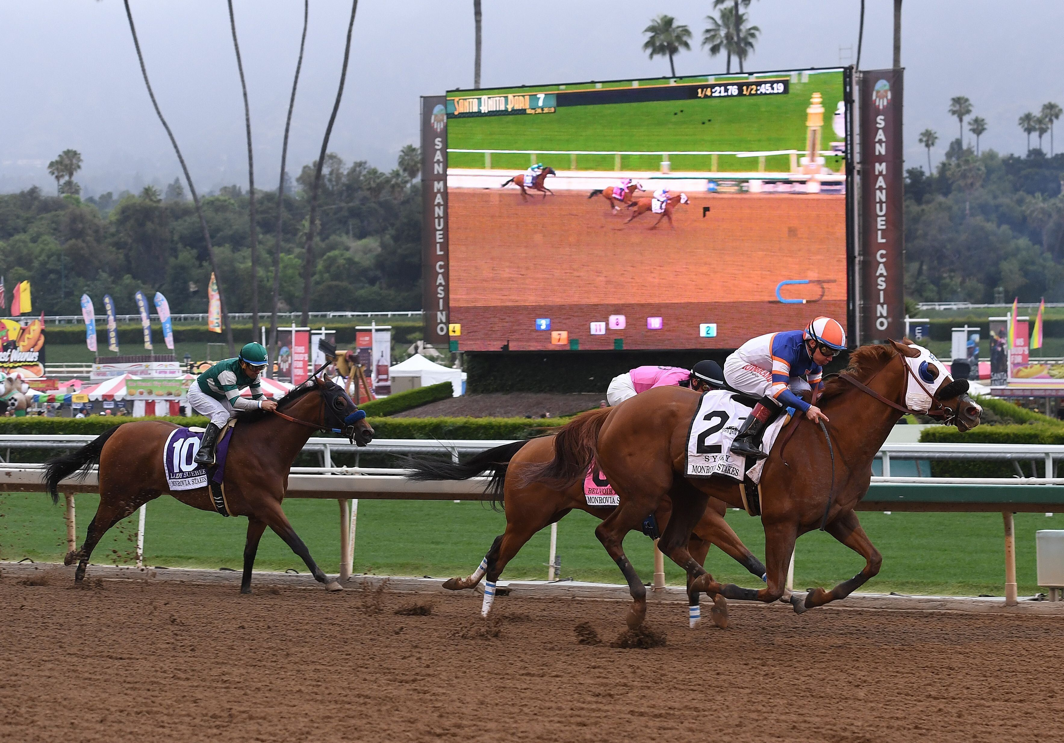 Horses race at the Santa Anita Racetrack on May 26 as controversy continues over the high number of horse deaths at the track