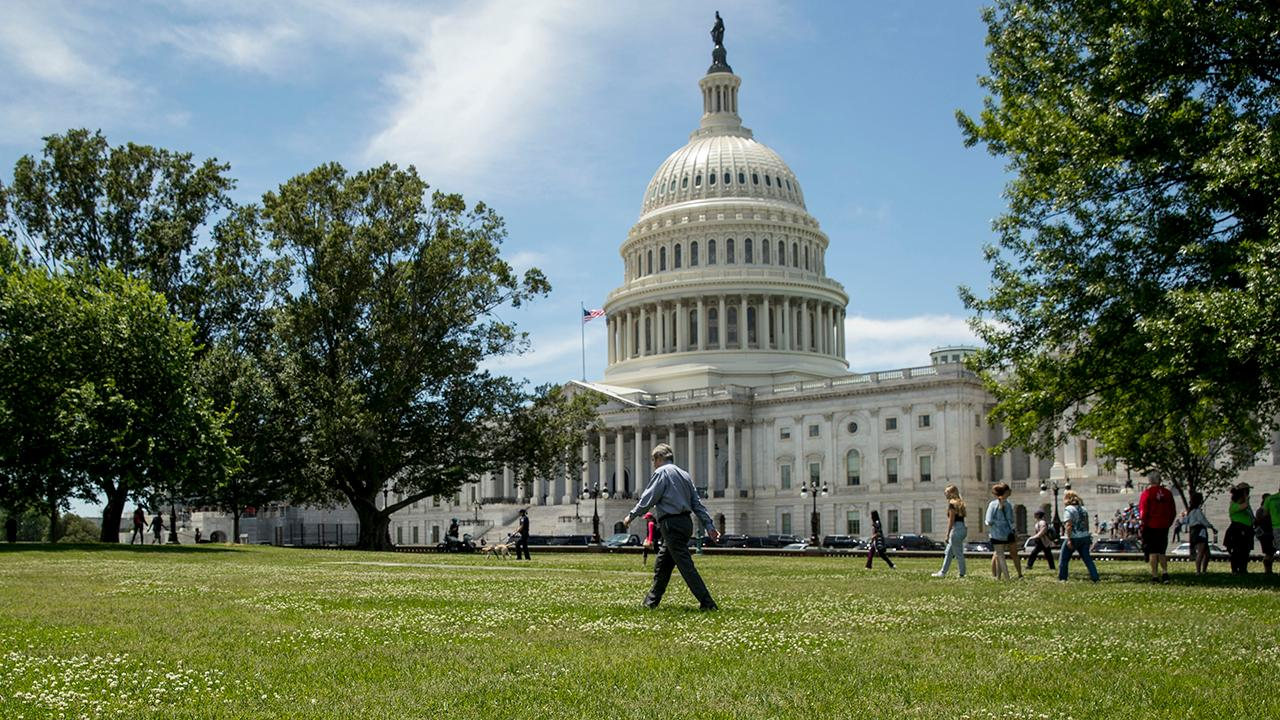 Sen. Bill Cassidy on gridlock in Washington, D.C.