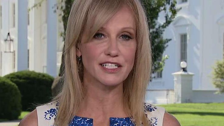 Kellyanne Conway: Democrats want to put a big roll of masking tape over my mouth because I helped elect Trump