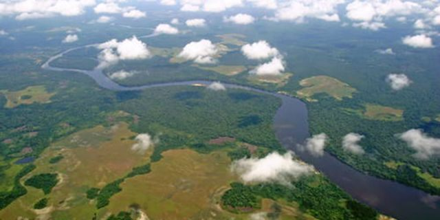 An aerial view of Salonga National Park in the Democratic Republic of Congo. (Photo: UNESCO)