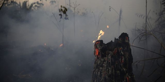 """A tree stump glows with fire amid smoke along the road to Jacunda National Forest, near the city of Porto Velho in the Vila Nova Samuel region which is part of Brazil's Amazon, Monday, Aug. 26, 2019. The Group of Seven nations on Monday pledged tens of millions of dollars to help Amazon countries fight raging wildfires, even as Brazilian President Jair Bolsonaro accused rich countries of treating the region like a """"colony."""" (AP Photo/Eraldo Peres)"""