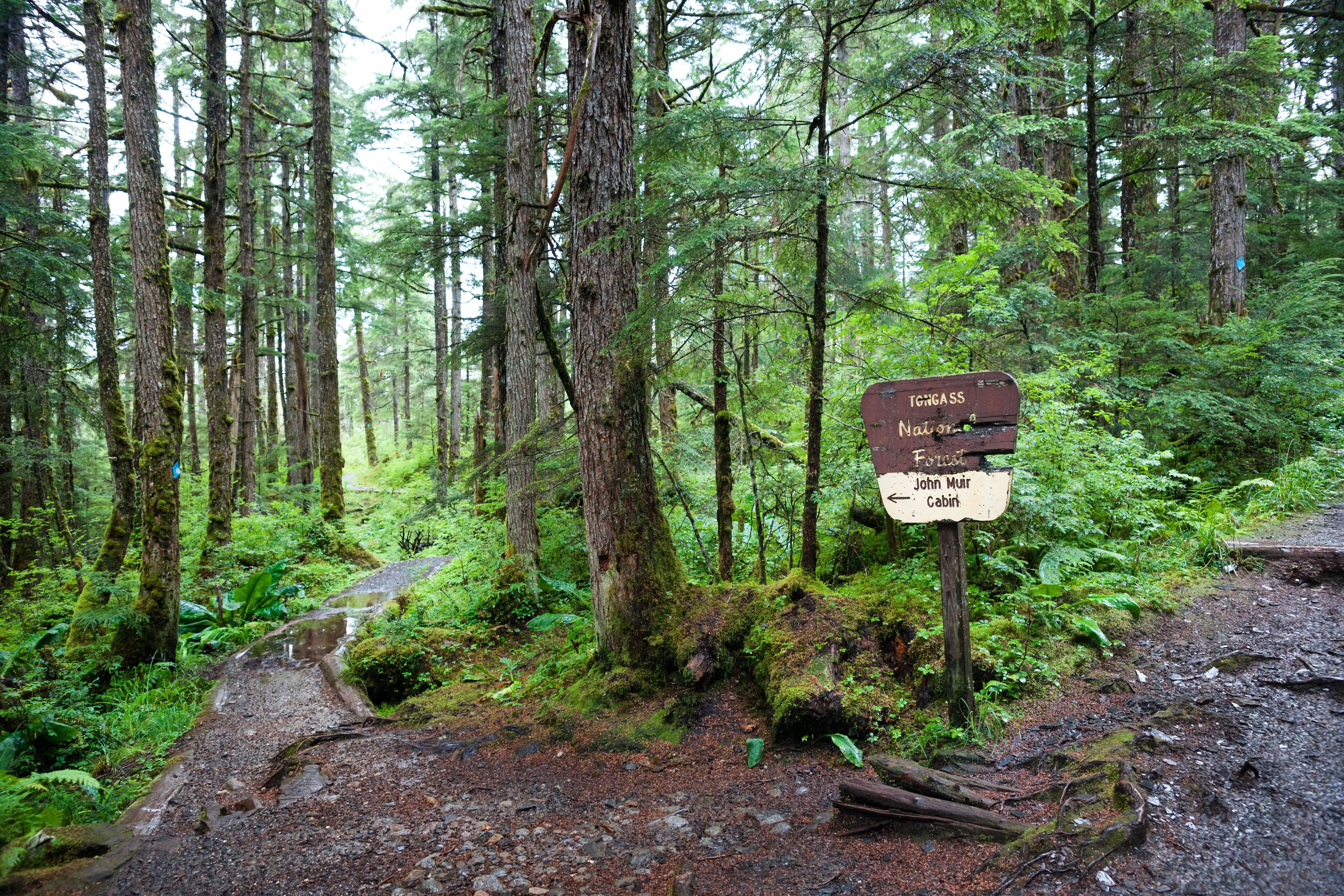 Signage to John Muir's cabin in Alaska's Tongass National Forest.