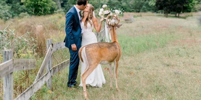 While the photos didn't go according to plan, the couple and photographer rolled with it and ended up with some truly unique shots.