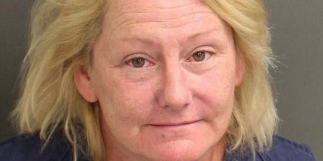 According to reports, 53-year-old Ellen McMillion of Brandon, Fla. was arrested and charged with third-degree felony battery and misdemeanor disorderly intoxication after she tried to slap a taxi driver and kicked a deputy sheriff at the park.