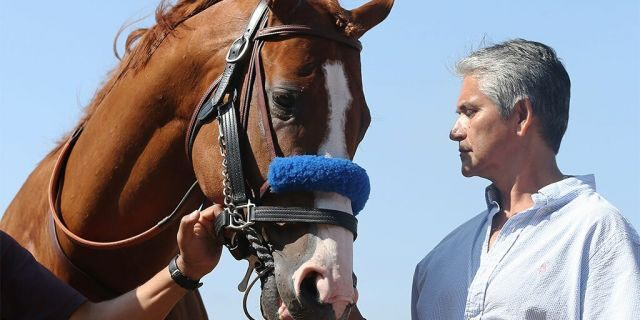 Justify is paraded for fans after being retired from racing at Del Mar Thoroughbred Club in July 2018. (Getty Images)