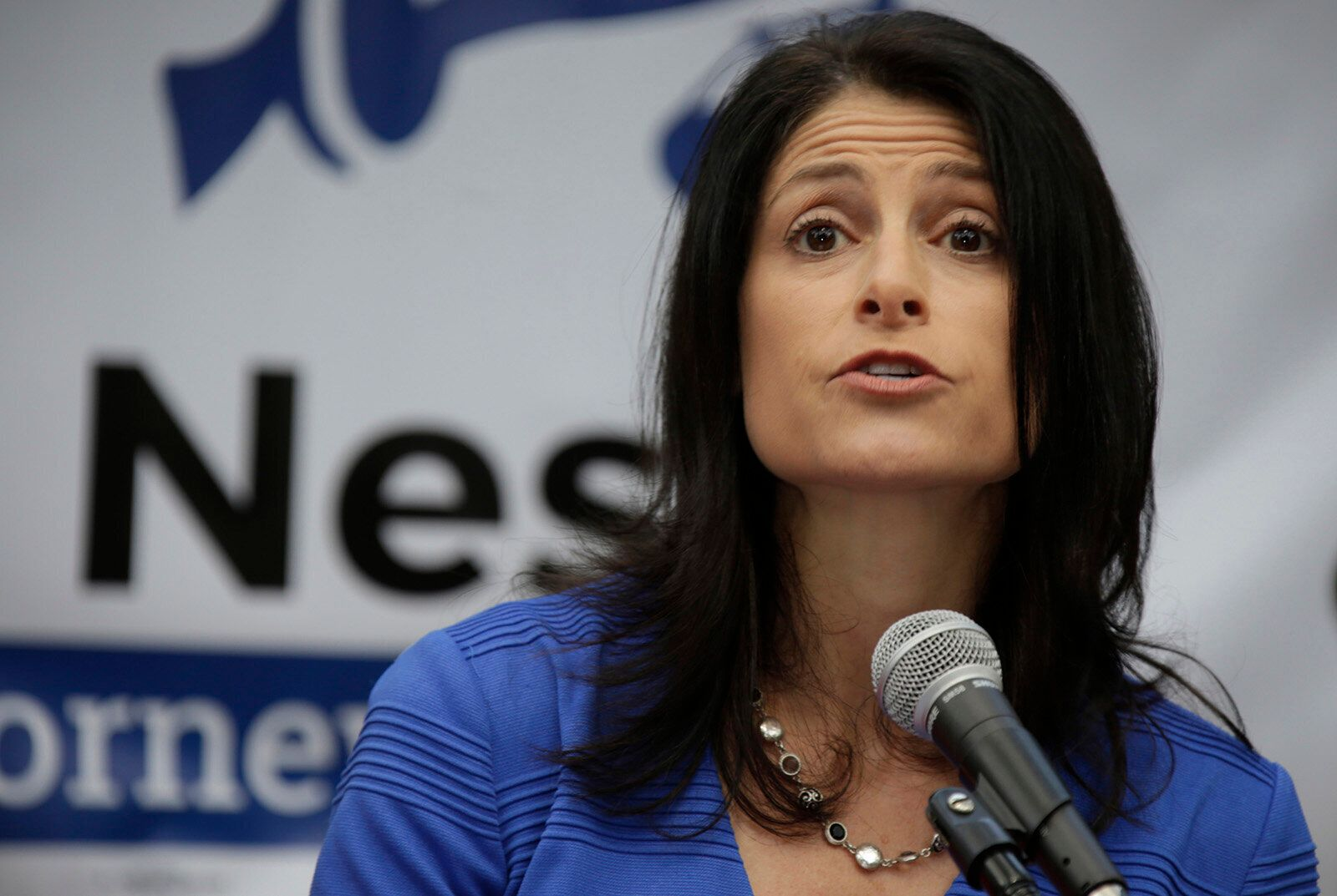 Democratic state Attorney General Dana Nessel is Michigan's first openly gay statewide officeholder.