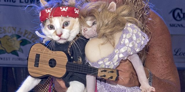 Diana Benton shows off her two cats dressed as country superstars Willie Nelson and Dolly Parton during the Fantasy Fest Pet Masquerade. (Rob O'Neal/Florida Keys News Bureau via AP)