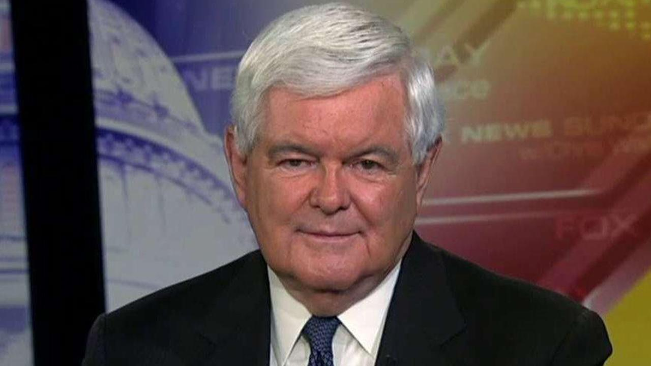 Newt Gingrich on Obama's gerrymandering fight, Biden's latest campaign trail blunder