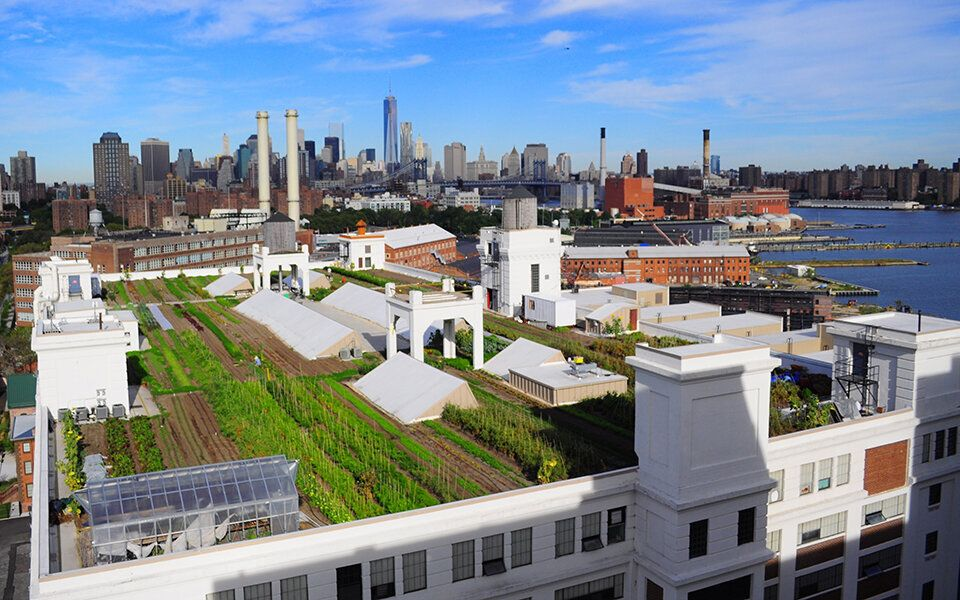 An overhead view of Brooklyn Grange's rooftop farm at the Navy Yard in Brooklyn.