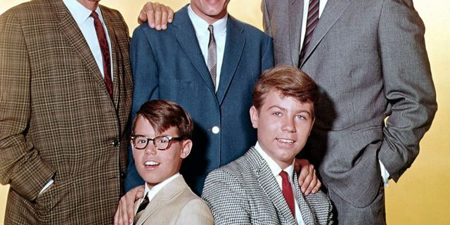 Fred MacMurray (right) stars as widowed aeronautical engineer Steve Douglas, raising his three sons with the help of William Demarest (left) as Uncle Charley., Don Grady (as Robbie Douglas-top center), Barry Livingstone (as Ernie Thompson Douglas -bottom left) and Stanley Livingstone (as Chip Douglas).