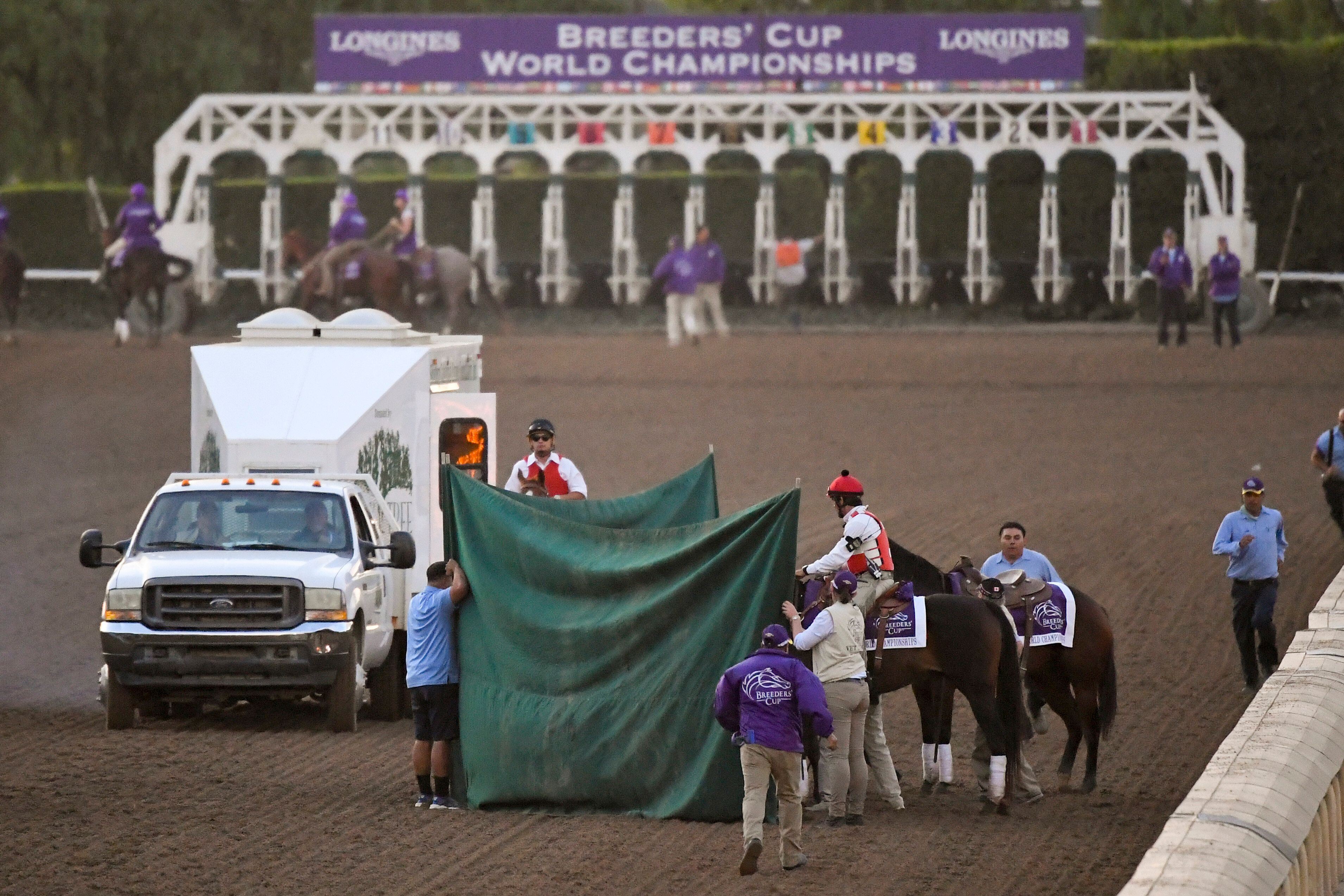 This Nov. 2, 2019, file photo shows track workers treating Mongolian Groom after the Breeders' Cup Classic horse race at Sant