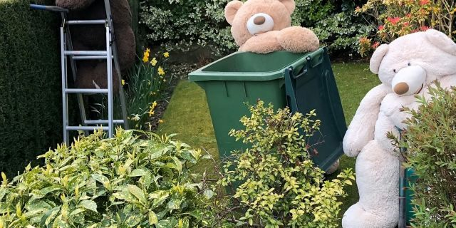 While the bears have been a permanent fixture within the family home, she has this week shared their recent exploits to raise people's spirits during coronavirus lockdown.