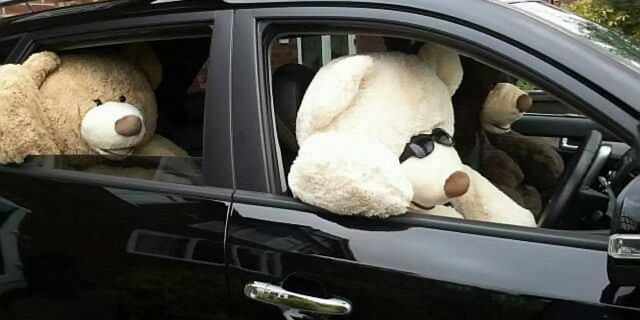 Briscallreturned the bears to public action when a nearby house did something similar with their own giant bears.