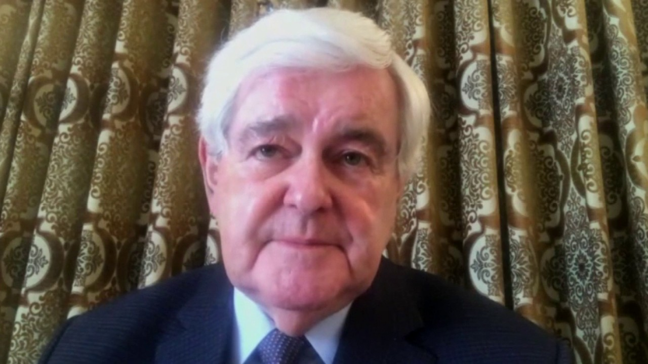 Newt Gingrich on how America can return to a pre-coronavirus economy