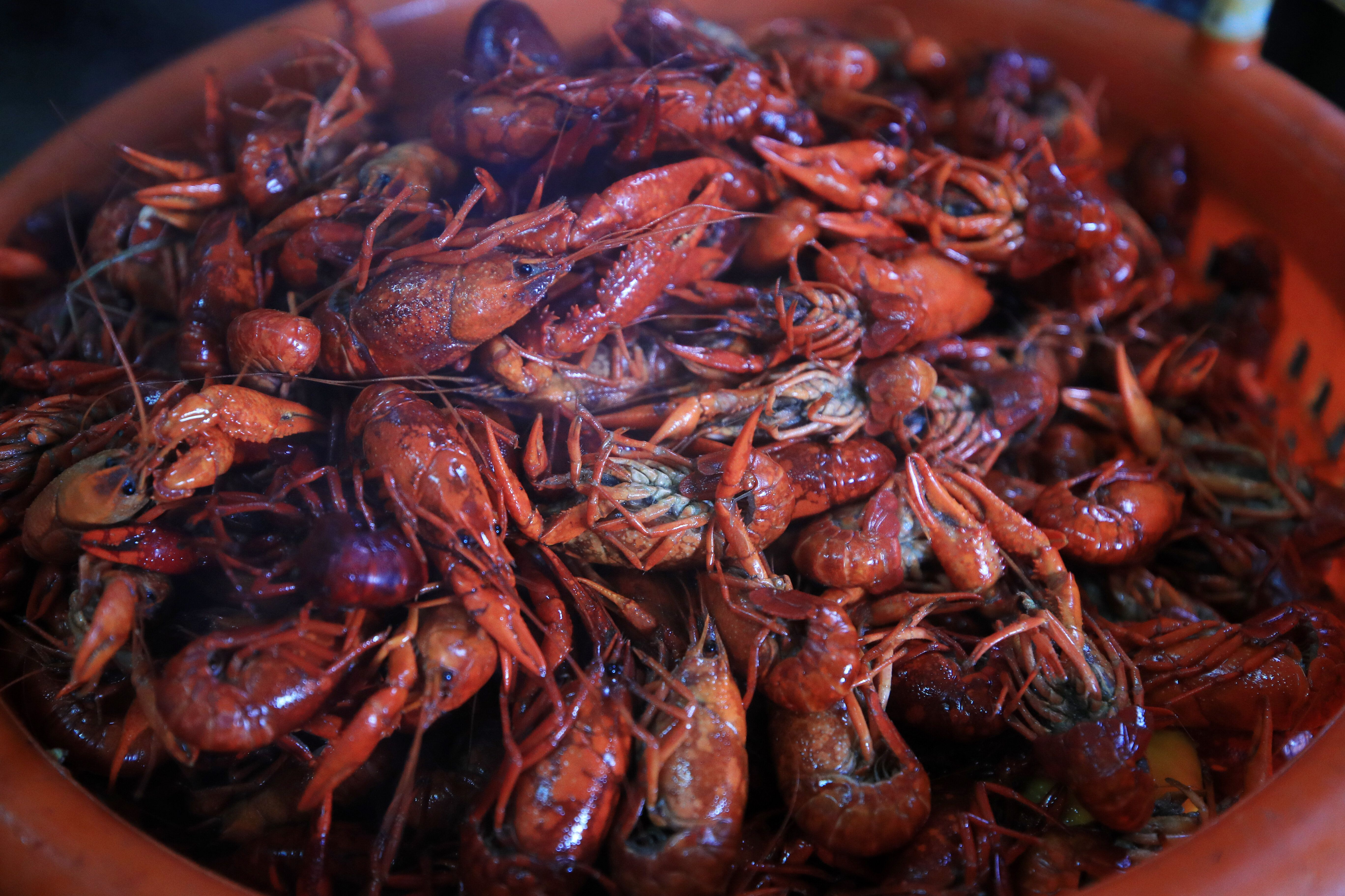 Alvarez Navarro and Hernandez Villadares say they were processing crawfish at a Louisiana plant when they and other workers g