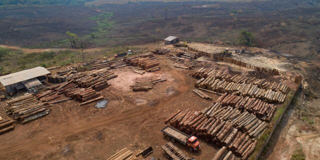 In this Sept. 2, 2019 file photo, logs are stacked at a lumber mill surrounded by recently charred and deforested fields near Porto Velho, Rondonia state, Brazil.