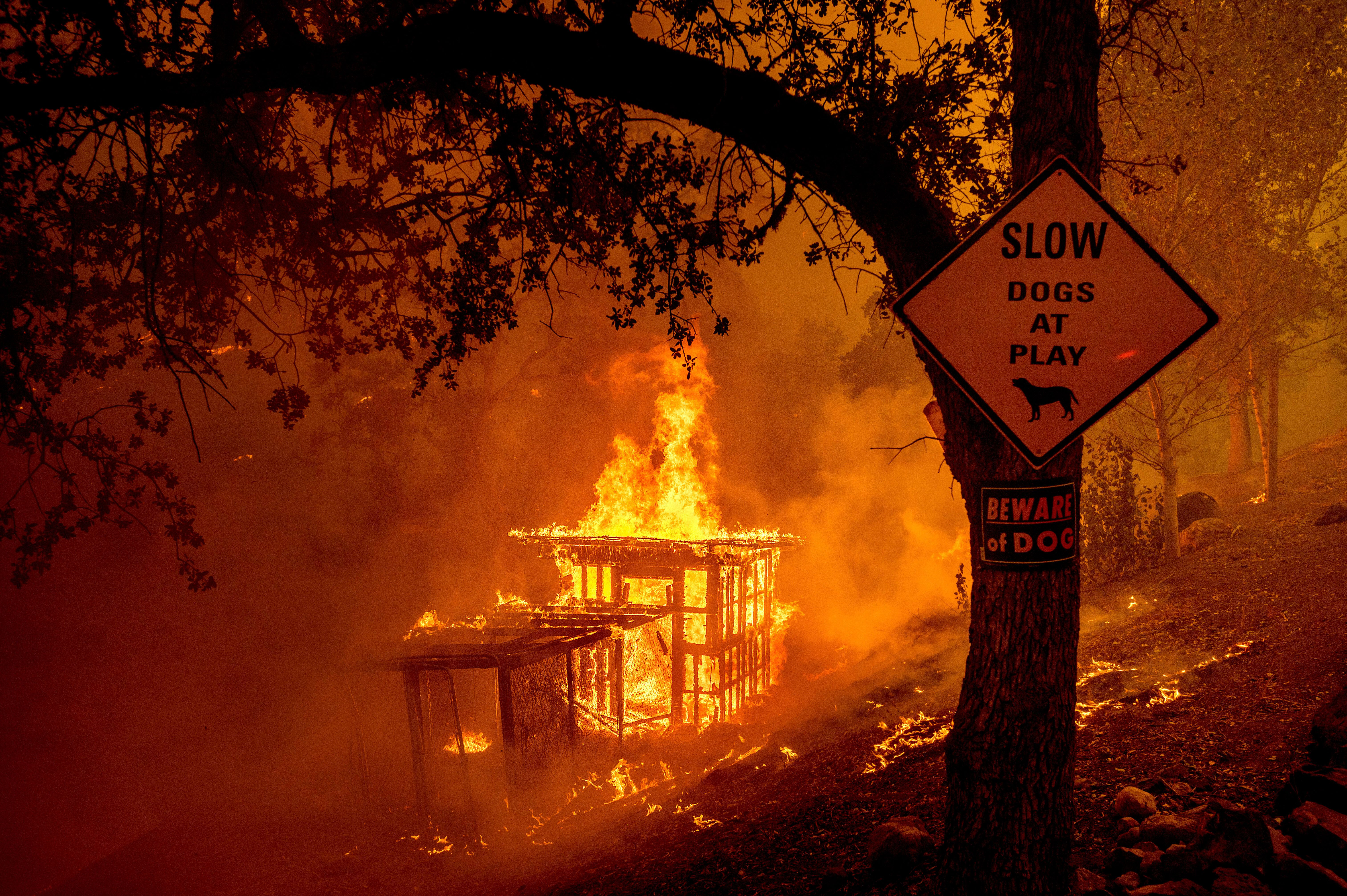 Fires are seen burning in Napa County on Tuesday. As of Wednesday morning, the state's largest wildfireshad consumed ro