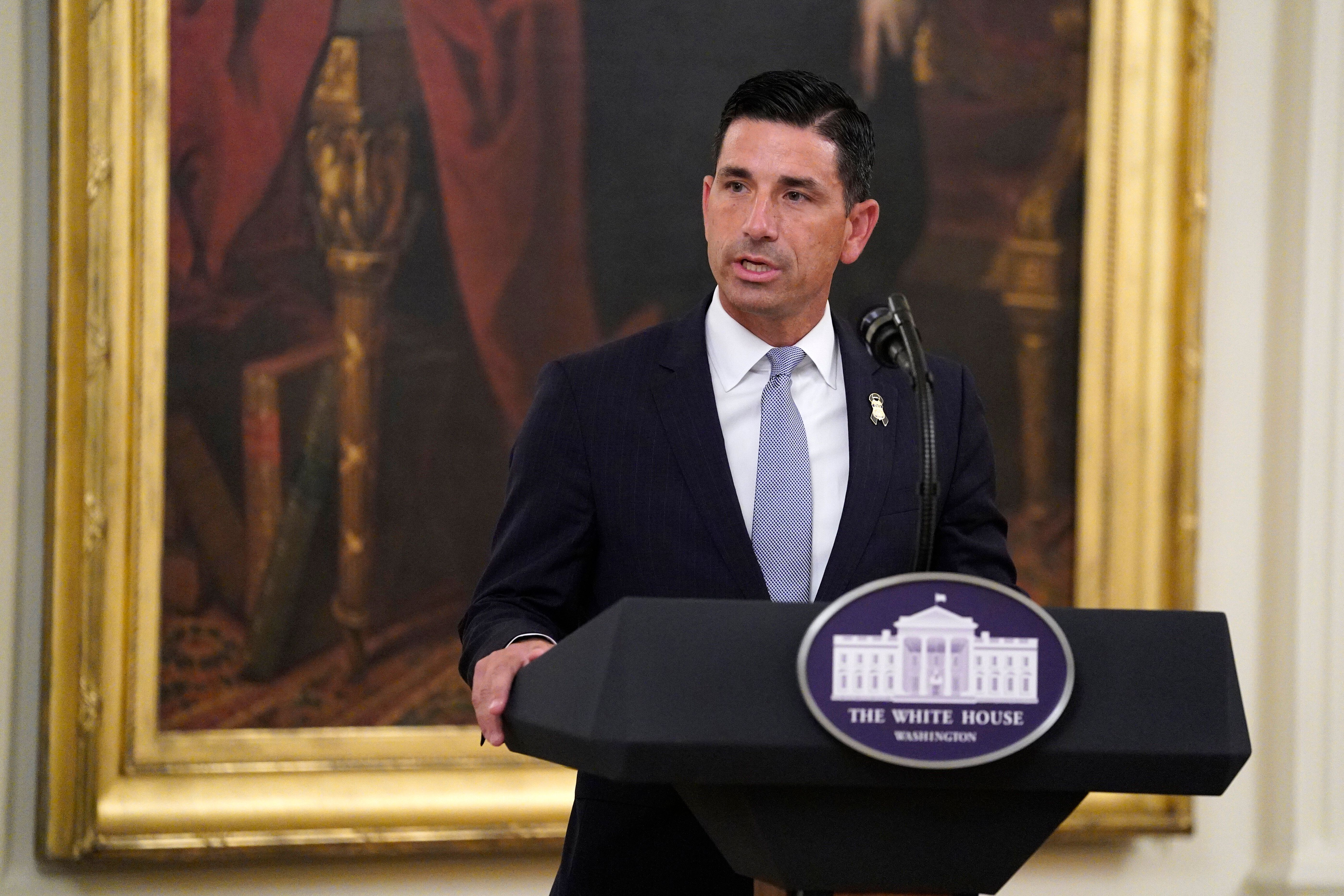 Chad Wolf, acting Secretary of Homeland Security, speaks at the White House in July.