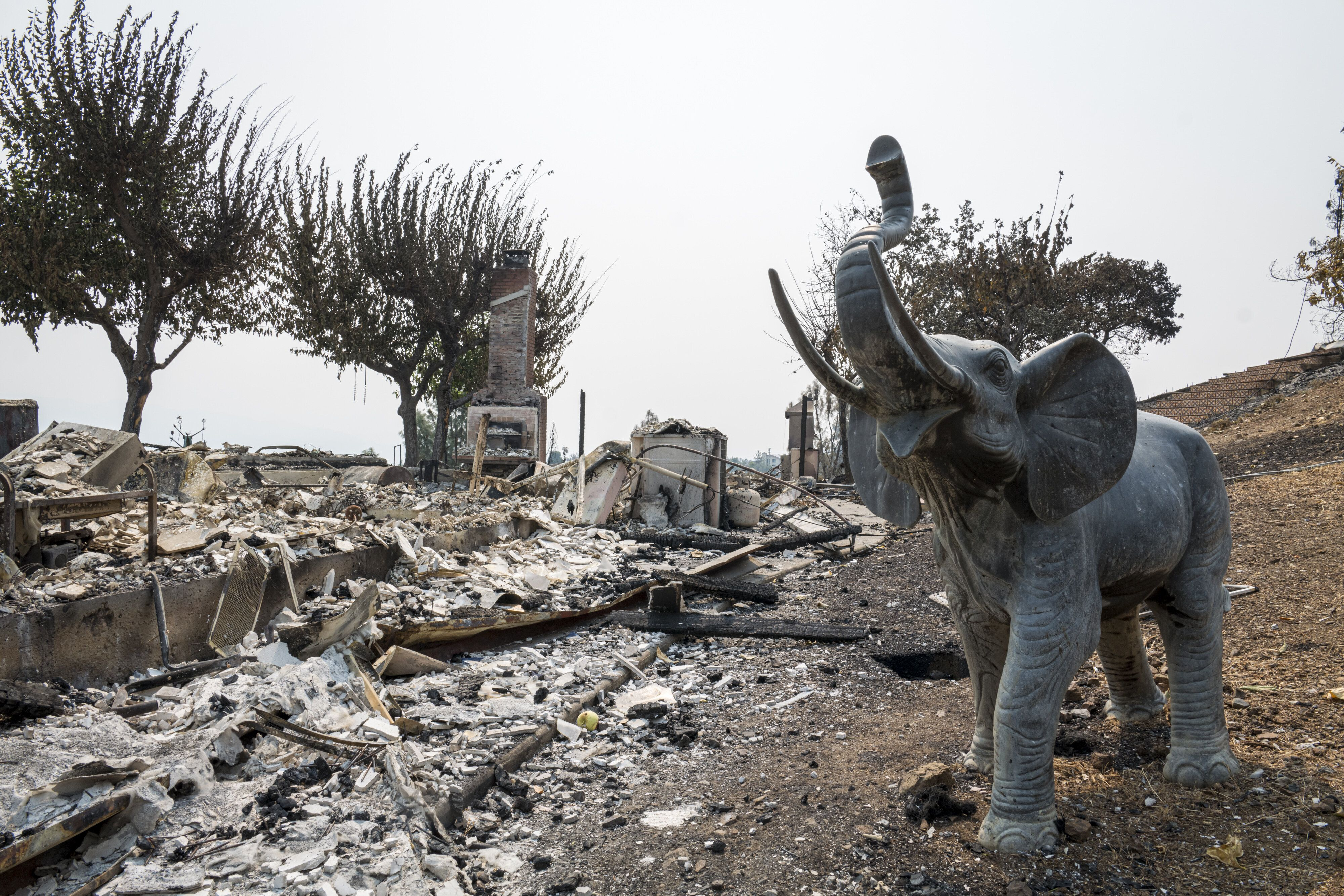 A home destroyed by the LNU Lightning Complex fire in Napa County, California, pictured on Aug. 25. More than 7,000 blazes ha