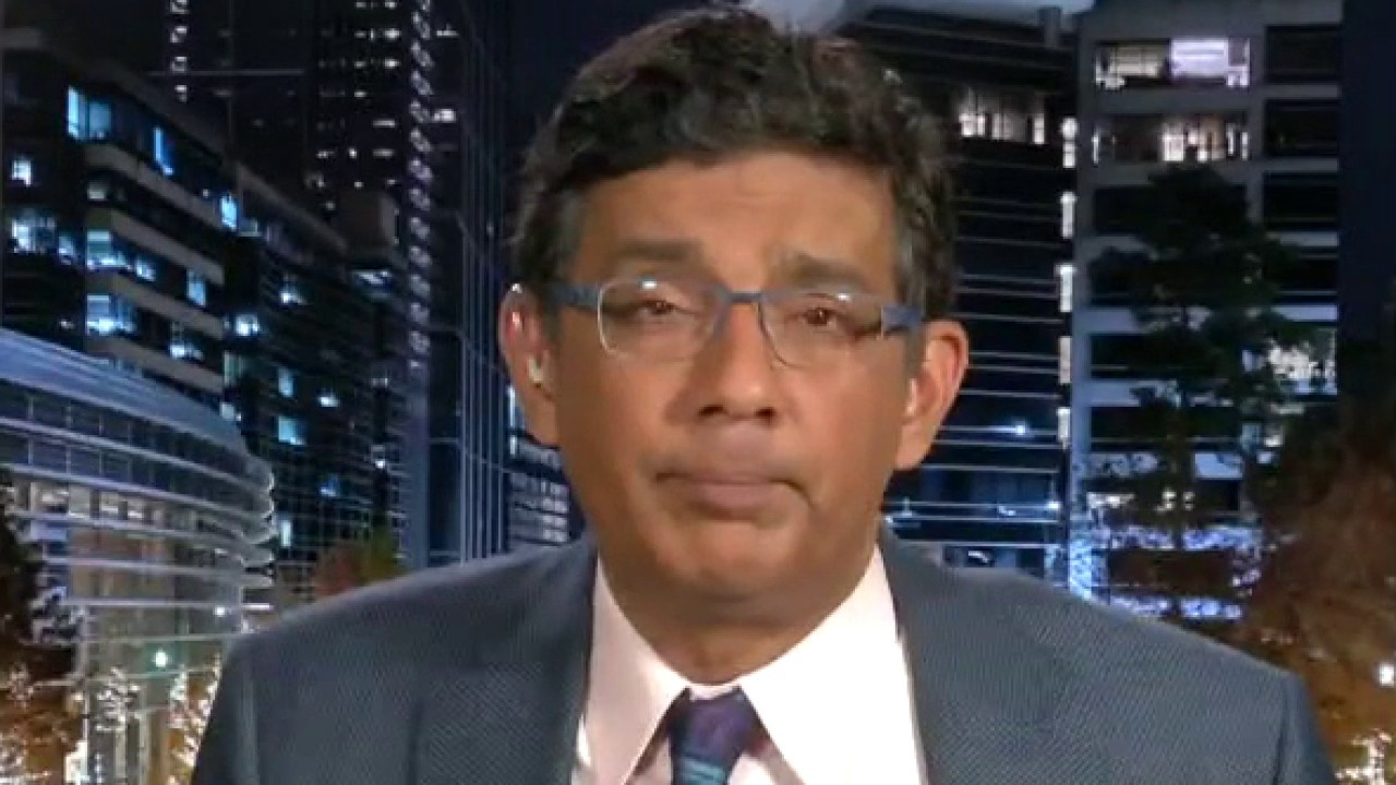 Dinesh D'Souza on why we should defund universities