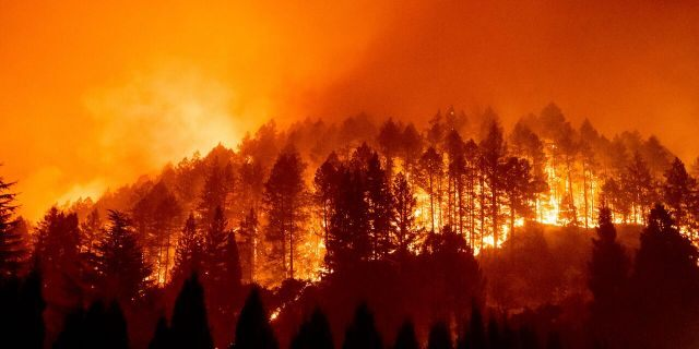 The Glass Fire burns a hillside above Silverado Trail in St. Helena, Calif., on Sunday, Sept. 27, 2020.