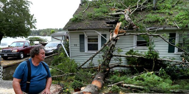 David Haigh looks at a large tree fell fell on his home on in Pembroke, Mass on Wednesday, Sept. 30, 2020 after a storm passed the area.