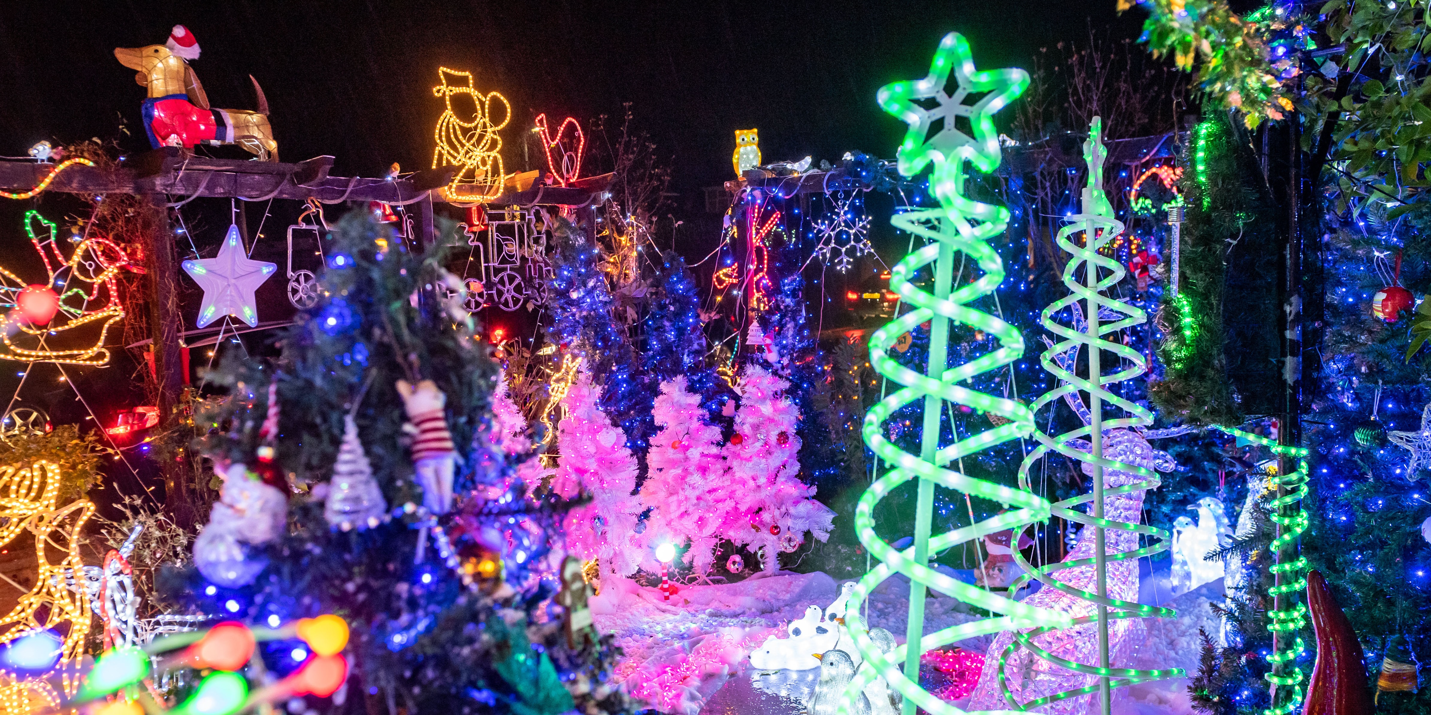 The family has used the attention that the Christmas displays have garnered to help raise money for charities, homeless shelters, and food banks.