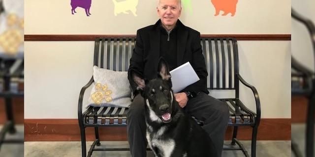President-elect Joe Biden and his dog, Major.