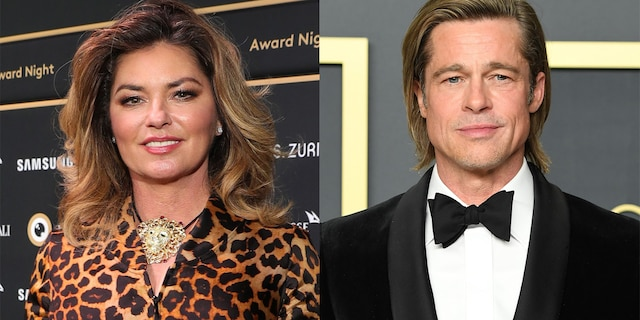 Shania Twain sent Brad Pitt a cheeky birthday wish years after referencing him in a song.
