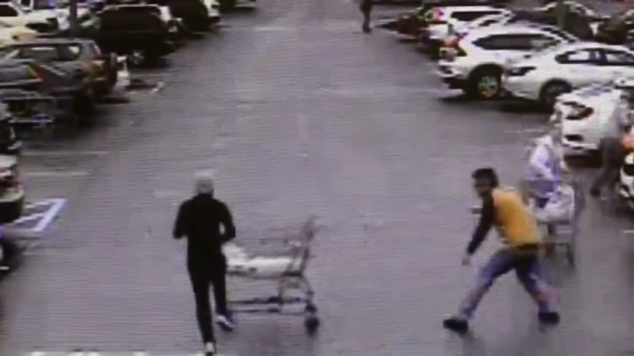 Shopper uses grocery cart to stop thief