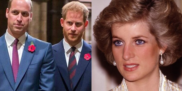 Princes William and Harry are expected to reunite later this year to honor their late mother, Princess Diana.