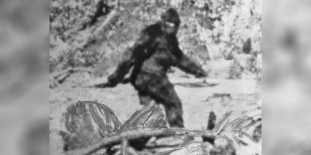 """Last week, Fox News reported that Rep. Justin Humphrey (R) introduced House Bill 1648, urging the Oklahoma Wildlife Conservation Commission (OWCC) to establish a """"bigfoot hunting season."""""""