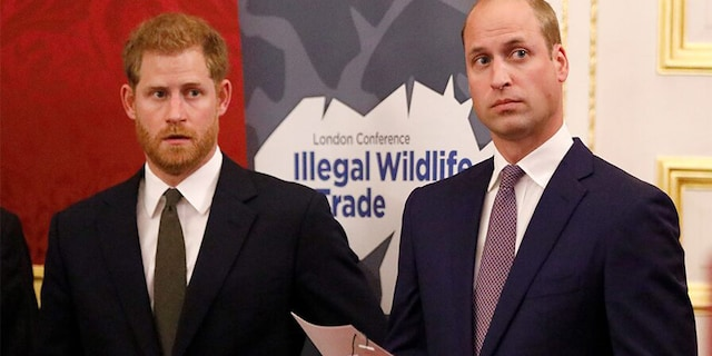 Prince William (right) and Prince Harry (left) are scheduled to reunite this summer to commemorate their mother's birthday.