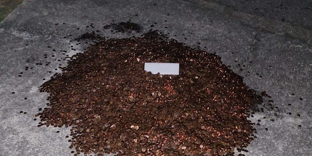 The pile of pennies in Andreas Flaten's driveway (Credit: Olivia Oxley)