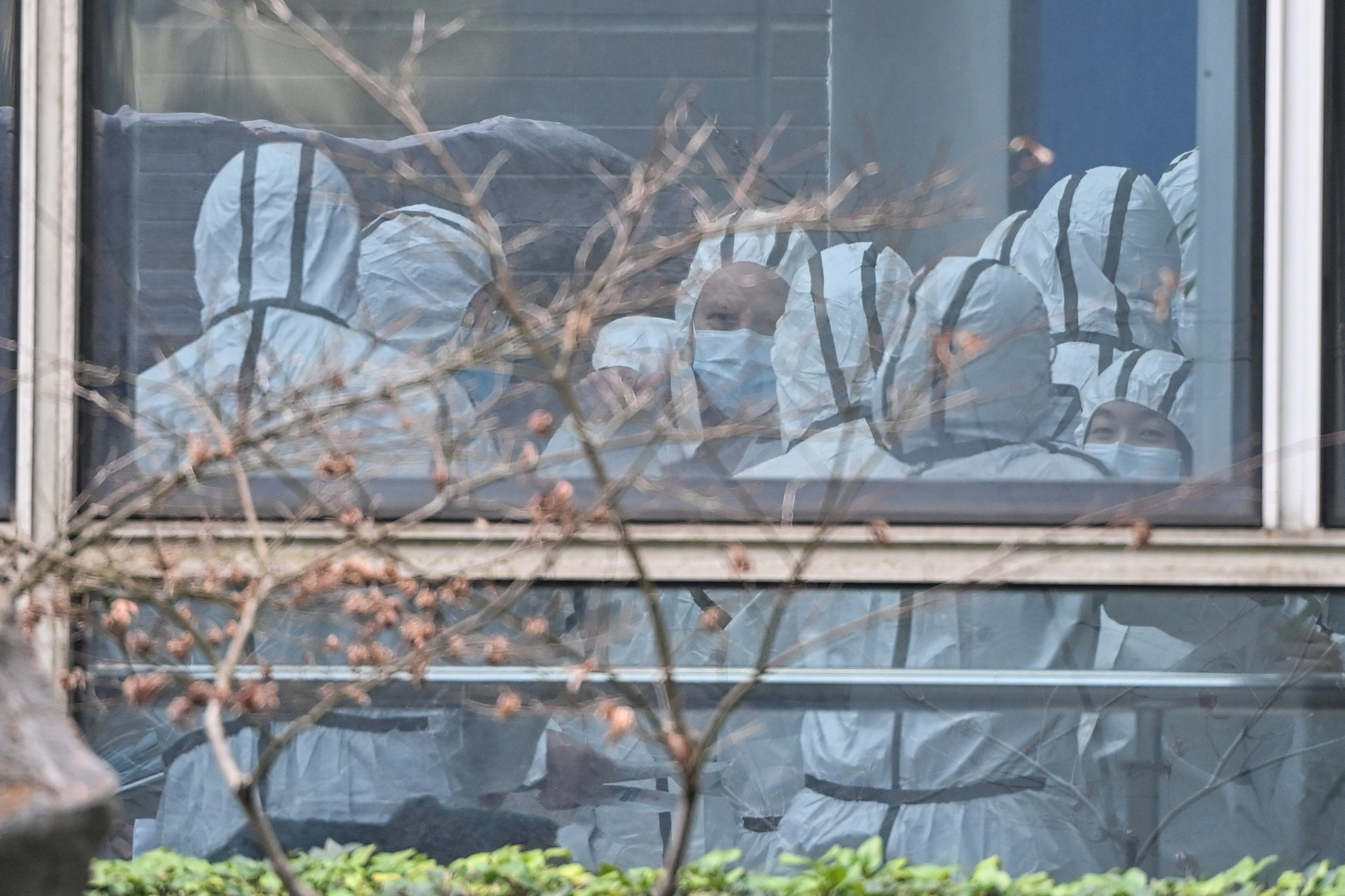 Members of the World Health Organization team investigating the origins of the coronavirus, visited the Hubei Center for anim