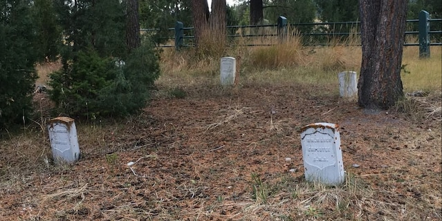 Rodrick Dow Craythorn was sentenced to six months in prison, six months of home detention and two years of probation for digging for treasure in a Yellowstone National Park cemetery.