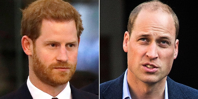 Prince Harry (left) and his older brother Prince William are expected to reunite this summer for a statue unveiling dedicated to their late mother Princess Diana.