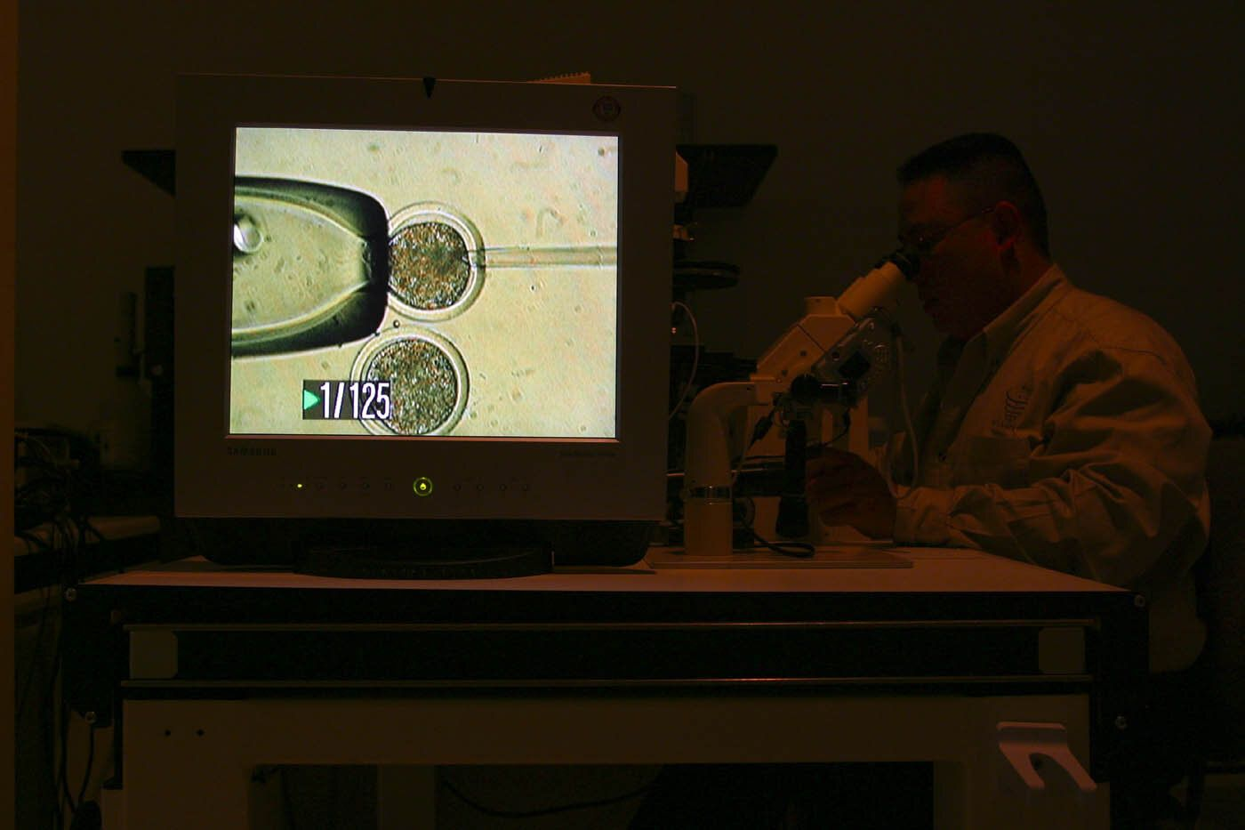 A 2005 photo shows a lab at ViaGen, a company in Texas that offers cloning of farm animals.