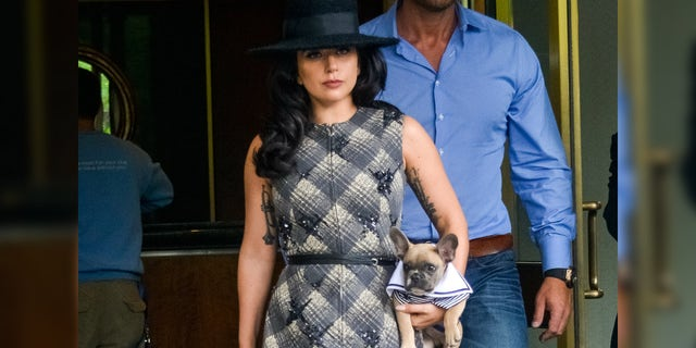 Lady Gaga seen leaving her apartment with her dog Koji on May 12, 2015 in New York City.