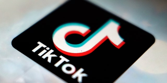 A view of the TikTok app logo, in Tokyo on Sept. 28, 2020. (AP Photo/Kiichiro Sato, File)