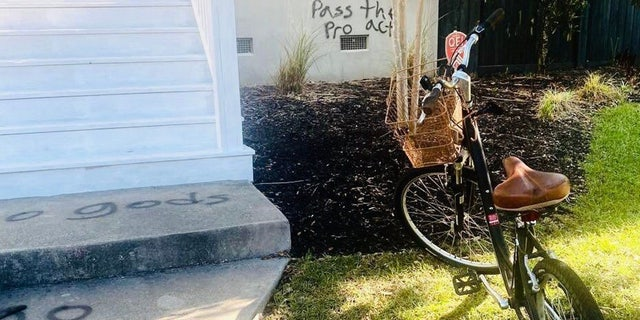 Rep. Nancy Mace, R-S.C., released photos of her home being vandalized.