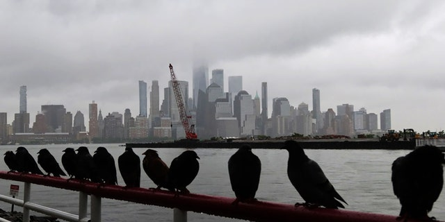 Fog shrouds lower Manhattan and One World Trade Center in New York City as pigeons stand on a railing in the rain on May 30, 2021 in Jersey City, New Jersey. (Photo by Gary Hershorn/Getty Images)
