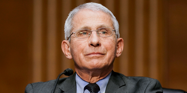 Dr. Anthony Fauci, director of the National Institute of Allergy and Infectious Diseases, testifies during a Senate Health, Education, Labor, and Pensions hearing to examine an update from Federal officials on efforts to combat COVID-19, Tuesday, May 11, 2021. Multiple GOP senators have called on Fauci to resign or be fired this week. (Jim Lo Scalzo/Pool via AP)