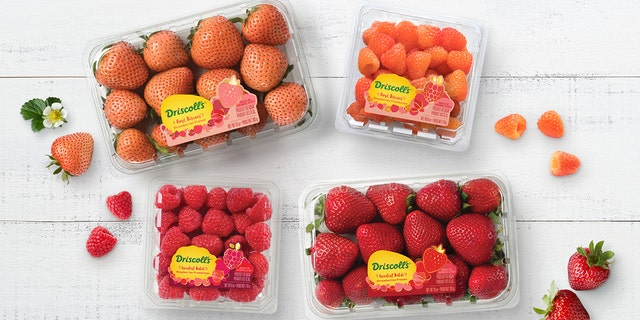 Rosé wine-flavored strawberries and raspberries are ripe for summer thanks to a produce maker combining the fruity sweetness with the taste of pink wine.