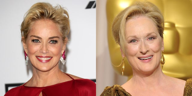 Sharon Stone said that there are other actresses 'equally as talented' as screen legend Meryl Streep.