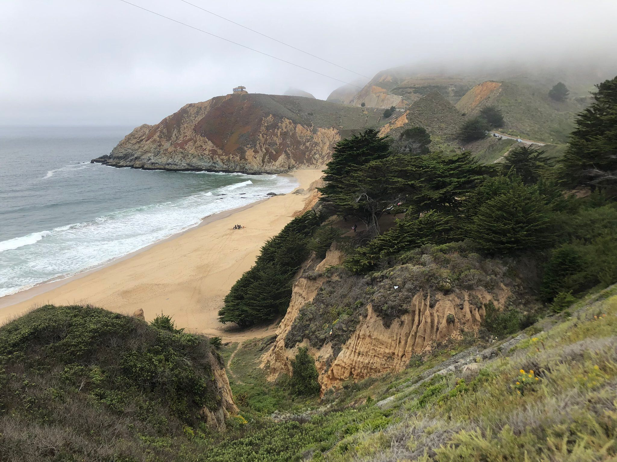 A man was swimming off of Grey Whale Cove State Beach, just south of San Francisco, on Saturday when he was bitten by a great