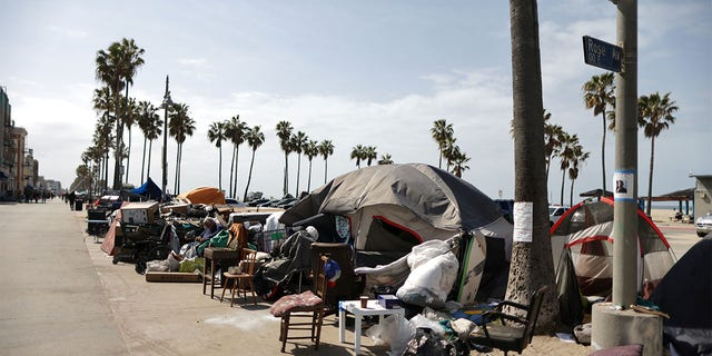 Homeless encampments line the boardwalk on Venice Beach in Los Angeles. Residents and business owners have said the encampments have led to an uptick in crime and other quality of life issues. (Reuters)