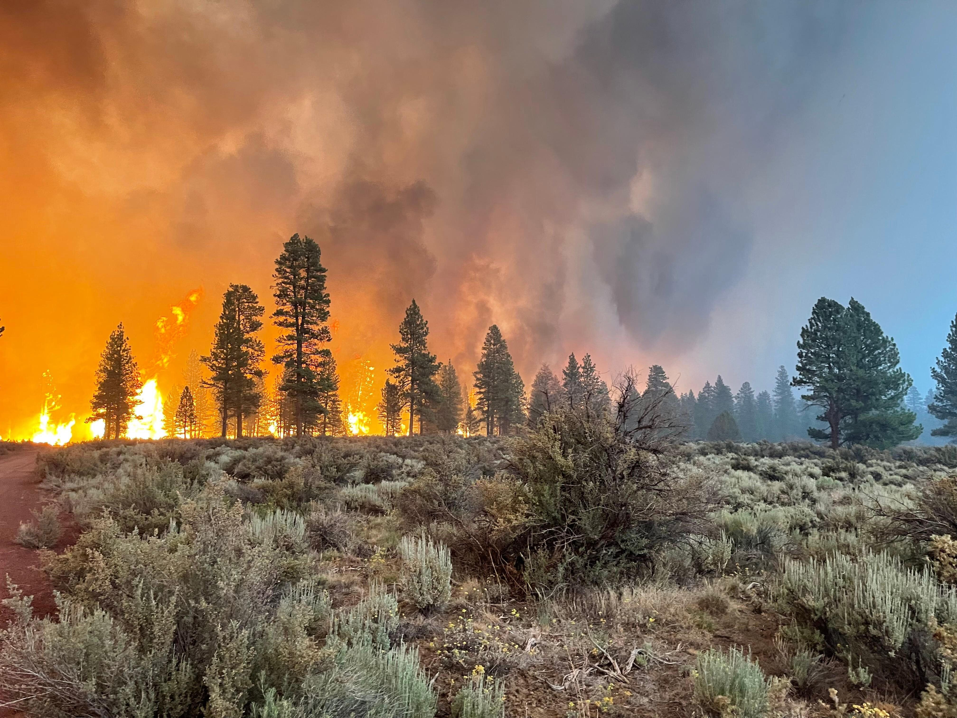 In this handout provided by the USDA Forest Service, the Bootleg Fire burns on July 12 in Bly, Oregon. The Bootleg Fire has s